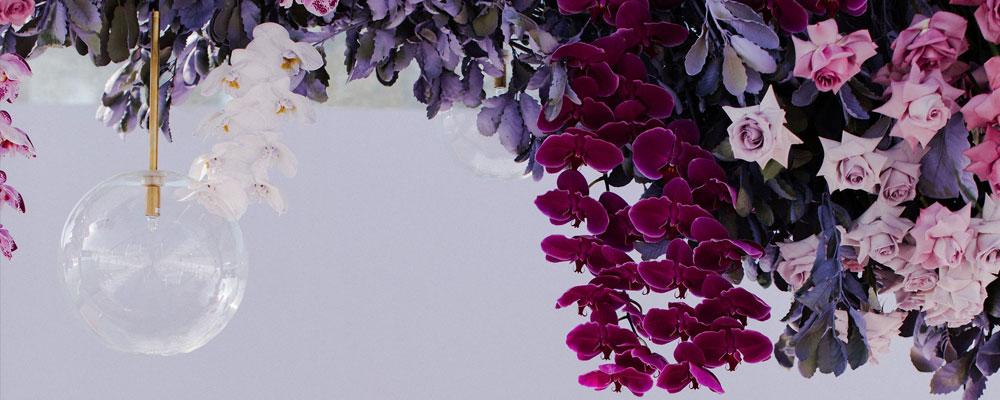 Meet Sir Botanical – Liv's pop-up florist